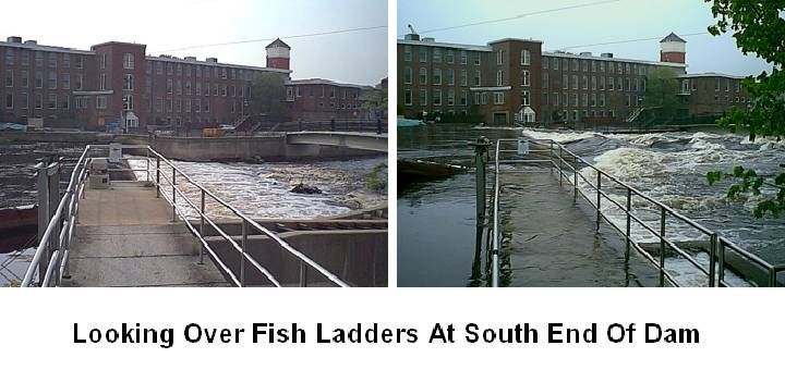 Normal and Flooded Fish Ladder